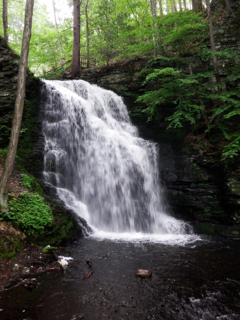 Bushkills Falls
