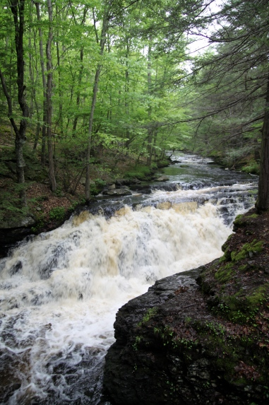One of the falls along the Bushkill Falls trails.
