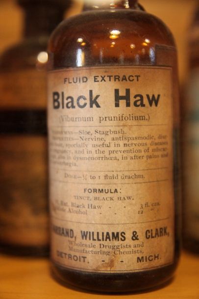 Black Haw Extract