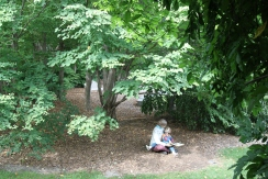 Peeking through the Wisteria tunnel finding a mom reading to her child under a Katsura. Sculpture by Seward Johnson.