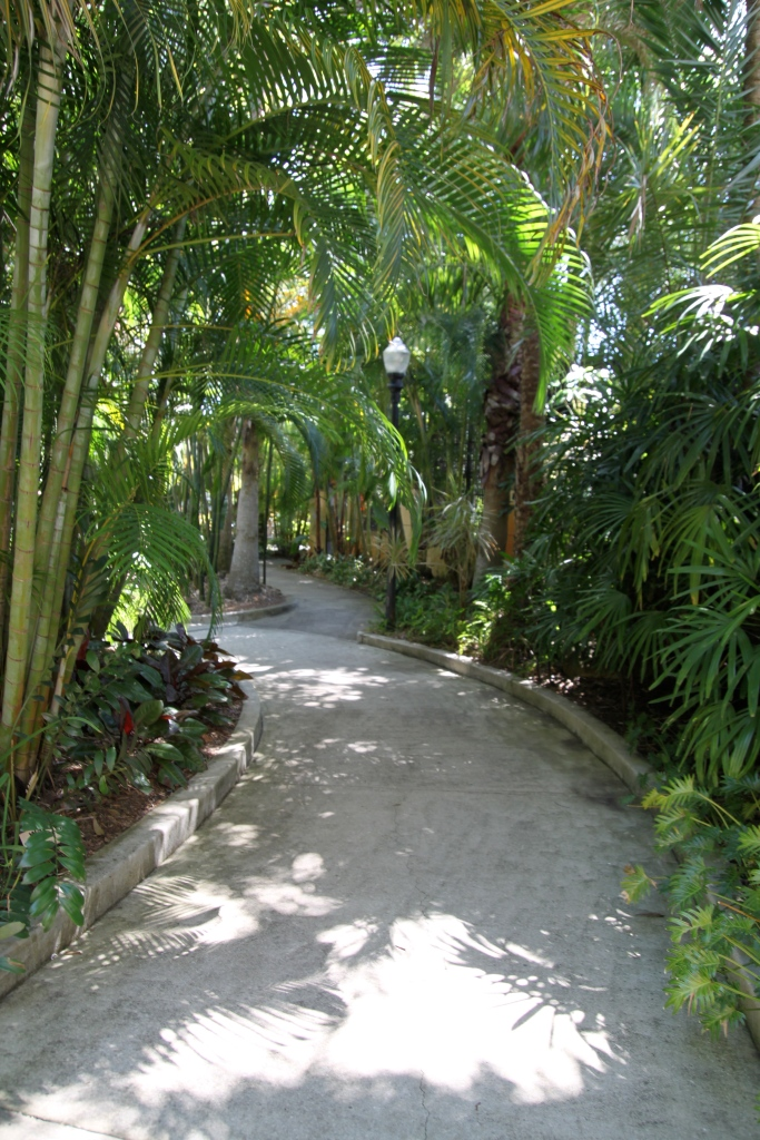 A Path winds its way through the Sunken Gardens of St. Petersburg Florida