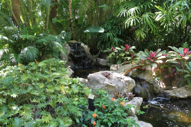 A Tropical View in the Sunken Gardens, St. Petersburg, FL