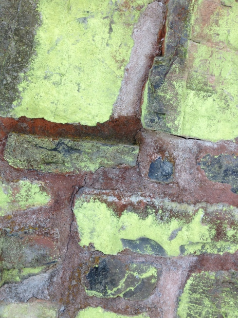 This foundation dates back to the early 1700s and these bright green lichen have taken a liking to it.