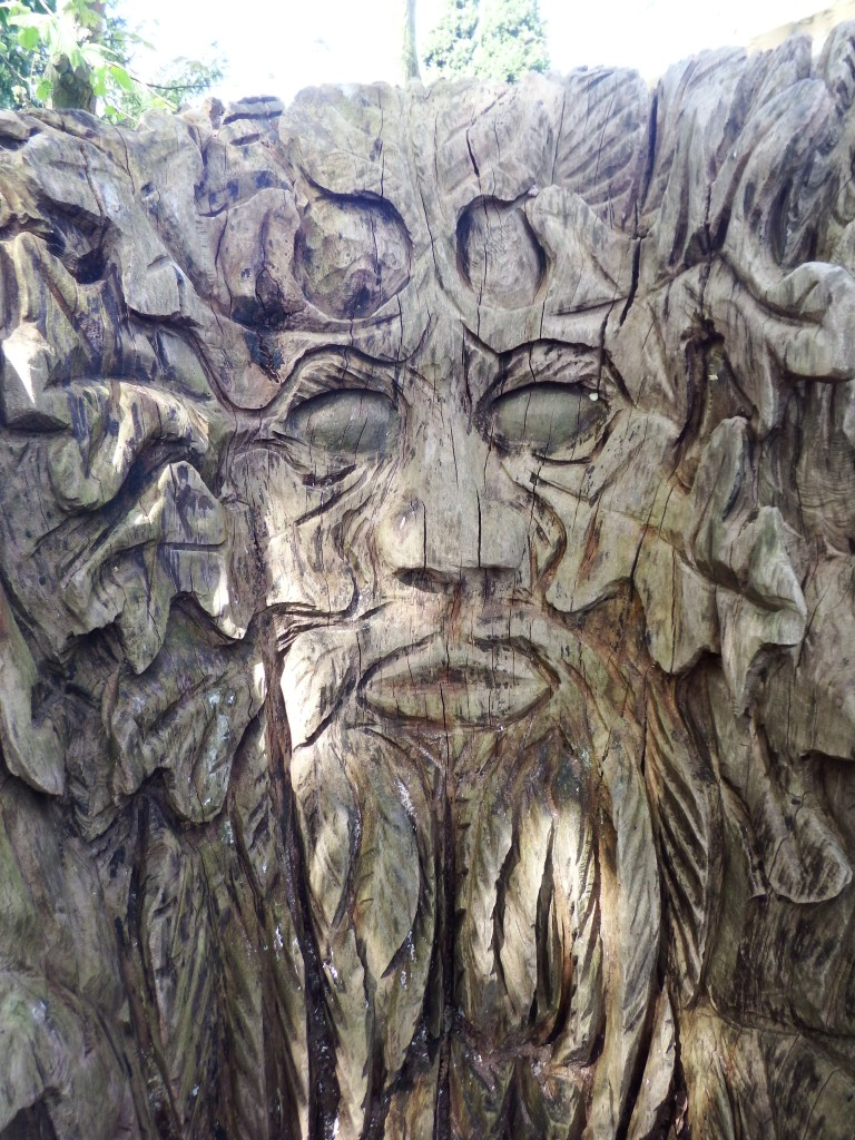 Carving in a stump at Trompenburg Botanic Garden, Rotterdam, The Netherlands