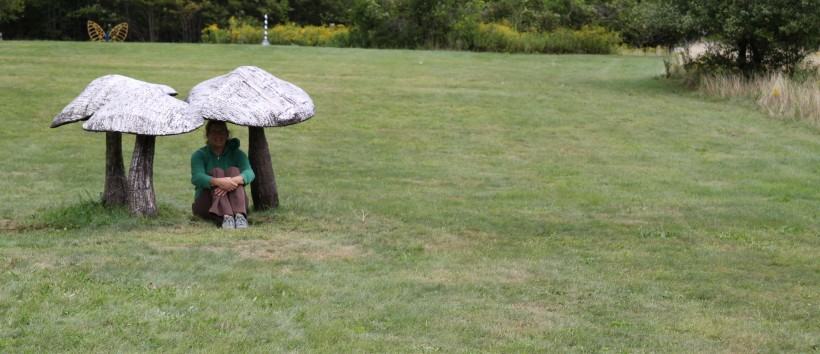 Here I sit among the Mushroom sculptures at Griffis Sculpture Park in NY