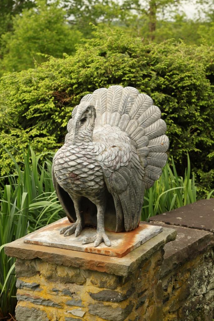 Turkey at Gray Towers Milford, PA
