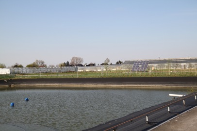 Water Collection System and Solar Panels evidence the Environmentally-Responsible production system.