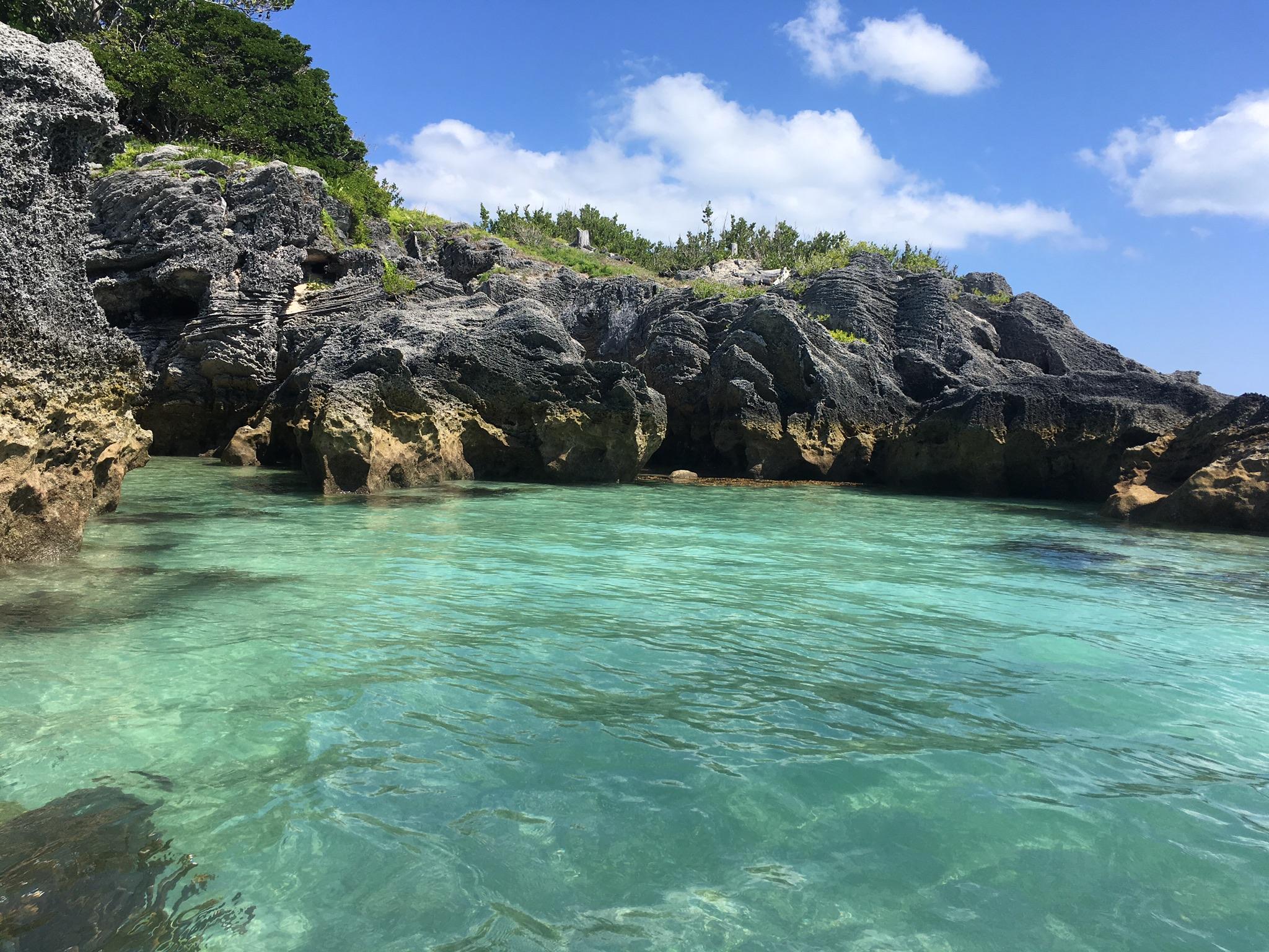 Around Palm Island Nature Reserve Bermuda
