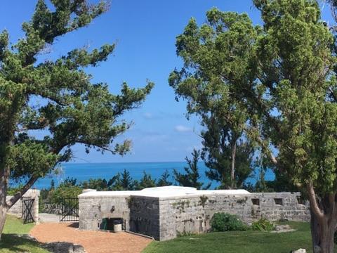 Scaur Fort Bermuda Cedar