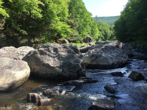 The Dumplings in the West River in Jamaica State Park VT