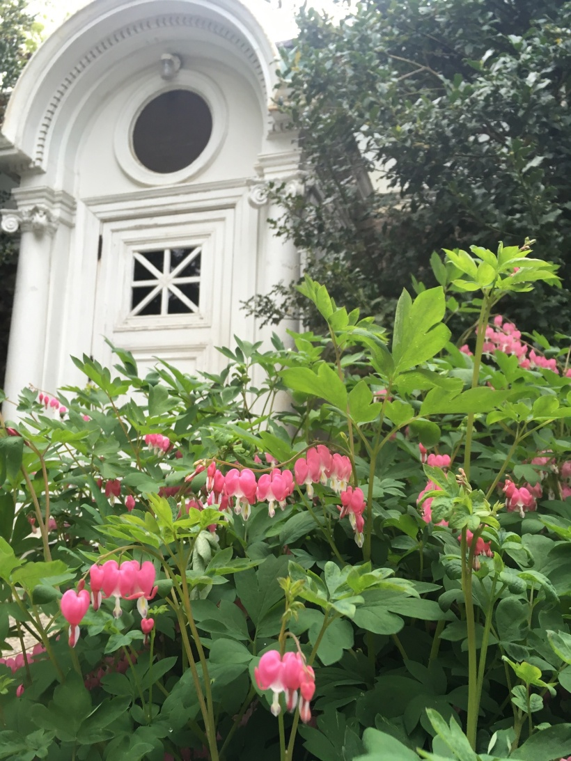 Campus Chapel Del Val and Bleeding Hearts
